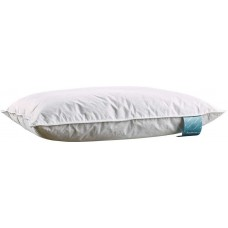 DanaDream White Duck Feather and Down Pillows
