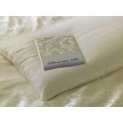 Natural Silk Pillows