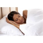The Fine Bedding Company Synthetic Pillow Sale